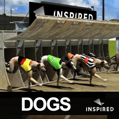 Virtual Sports – Dogs